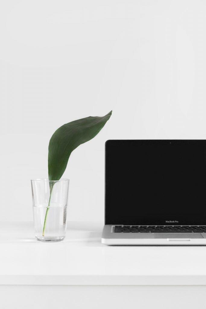 Laptop mit Pflanze